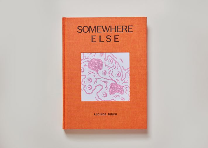 """Photo of """"Somewhere Else"""" by Lucinda Birch"""