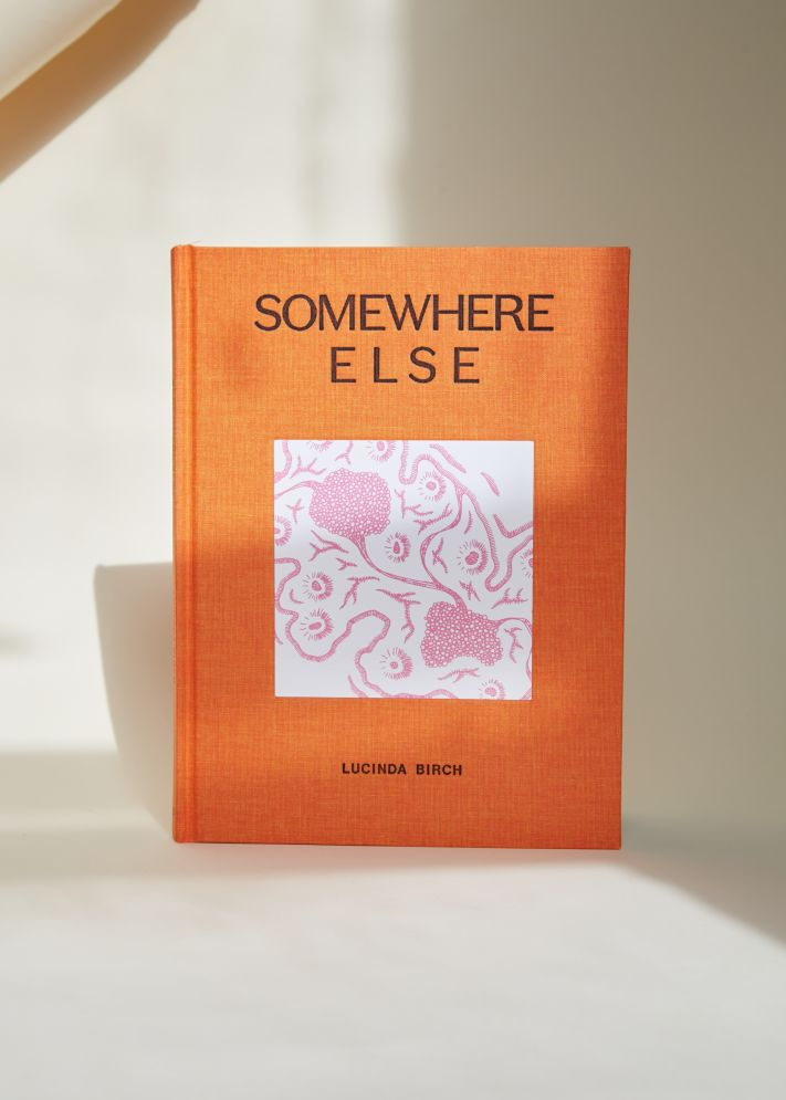 "Photo of ""Somewhere Else"" by Lucinda Birch"